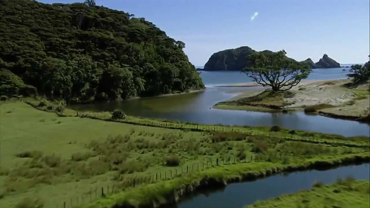 Высшее образование в Новой Зеландии: преимущества и условия поступления